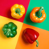 bell peppers plant - High quality Seeds Multicolored Peppers red Yellow Green White And Purple Bell Peppers Seeds Potted Plant Home Garden