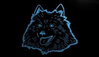 american pet shops - LS1792 b American Eskimo Dog Pet Shop Neon Light Sign jpg