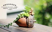 Wholesale dhl Microlandschaft Mini Succulent Plants Flowers Vase Flowerpot Terrarium Container Mini Bonsai Pots Ceramic Accessories