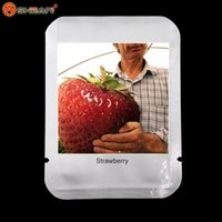 Wholesale 50 Giant Strawberry Seeds Bonsai Strawberry Seeds Edible Four Seasons Large Type
