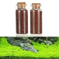 Wholesale Plant Seed Aquarium Fish Tank Plants Prospects Grass Seed Grass Landscaping