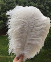 Wholesale FREE Natural white inch cm Ostrich Feathers centerpiece Wedding decor PARTY EVENT Decor supply decor