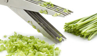 Wholesale Multi functional Stainless Steel Kitchen Knives Layers Scissors Shredded Scallion Cut Herb Spices Scissors Cooking Tools