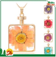 Wholesale Crystal Necklace Pendents - CA348 Best Sellers Big Multi Color Dry Flower Specimen Pendant Necklaces For Wedding Dress 2016 Essential Oil Diffuser Gold Chain Pendents
