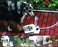 Hiltow Dog Suministros Upgrade Pet Paso Spray Paw Fuente de agua Alimentador Drinking Spring Pedal Alimentador de agua