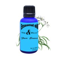 Wholesale Vicky winson Pure flower aromatherapy essential oils Water soluble aroma furnace aroma humidifier essential oil ML VWXX16