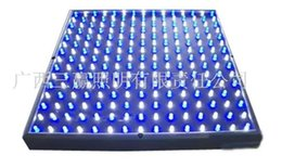 Wholesale Large supply of w square small power LED plant growth lamp manufacturers selling quality assurance