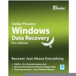 Wholesale Stellar Phoenix Windows Data Recovery Professional v6