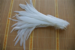 Free shipping Wholesale 100pcs lot 12-14inch Perfect pure White Coque Tail rooster tail Feather for Costumes