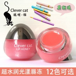 Wholesale Smart one cat aqua light lip gloss frozen lips lip gloss nourishing moisturizing lip brush downplay