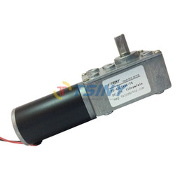 Wholesale Small self lock Motor High Torque V Reversible RPM PMDC Worm Gear Tooth Box Motor for DIY BBQ Machine Replacement Parts