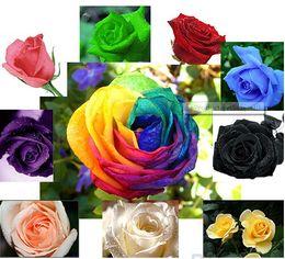 2016 красные синие цветы Готовый Бульон Розы Семена Синий Красный Фиолетовый Розовый Черный Радужный Лепесток Растения, Дом, Сад, Цветы, Бонсай дешево красные синие цветы