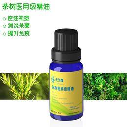 Wholesale Australian tea tree oil essential oil aoyanlidan unilateral