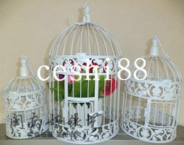 Wholesale Fashion iron birdcage wedding decoration bird cage bird cage bird cage props