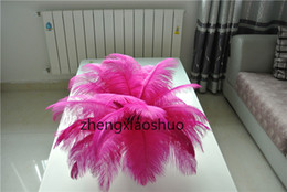 Wholesale 100pcs lot 12-14inch(30-35cm) Hot Pink ostrich feathers plumes fuchsia feather for Wedding centerpieces christmas decorations