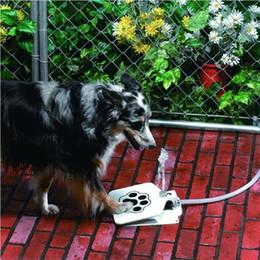 Wholesale New Pet Dog Cat Automatic Spray Water Dispenser Machine CM