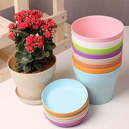 """Adorable 5"""" Mini Plastic Flower Seedlings Nursery Pot Planter Flower Pot with Pallet 7 Colors Top Quality D497E"""