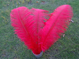 Wholesale_100 pcs a lot 6-24inch red Ostrich Feather Plume for Wedding Centerpieces table decoration