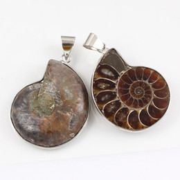 Wholesale 10 Pcs Popular Simple Style Silver Plated Natural Ammonite Reliquiae Stone Modern Pendants Charms Jewelry