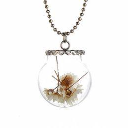 Wholesale 2016 New Wish bottle necklace Real dry flower glass bottle Irish botanical pendant natural flowers dandelion necklace