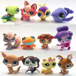 Wholesale 100pcs Hasbro Toy High Quality LPS Littlest Pet Shop Animals Figures Toys Girl s Best Gift Q Pet Anime Action Figures z