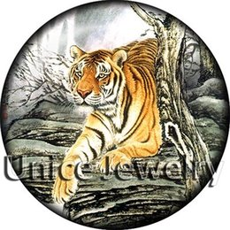 Wholesale AD1303301 mm Snap On Charms for Bracelet Necklace Hot Sale DIY Findings Glass Snap Tiger Symbol Design noosa jewelry making