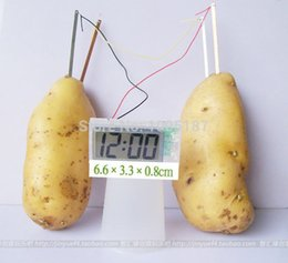 Wholesale New creative gifts potato clock power supply fruits and green energy generation digital alarm clock creative Electronic Table