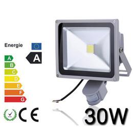 2016 Hot Selling outdoor 30W PIR LED Floodlight, 100% Full watt