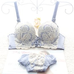 Japanese luxury New Deep V New brand sexy push up bra set floral embroidery lace women underwear set bra and panties sets