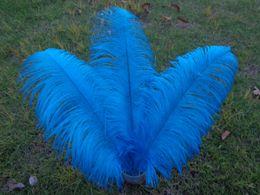 Wholesale_100 pcs a lot 6-24inch Lake blue Ostrich Feather Plume for Wedding Centerpieces table decoration