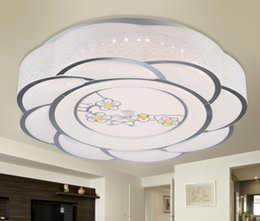 Wholesale 312 Modern minimalist fashionable acrylic snuff shaped cyclone LED ceiling lamp in the living room balcony bedroom lighting