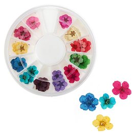Wholesale Best Price Set Real Dry Dried Flowe Nail Art Designs Tools Acrylic Tips UV Gel Decorations Assorted For Women Hotting