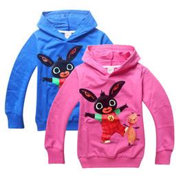 Wholesale Bing Bunny Hooded Sweatshirt Kids Boys Girls Long Sleeve Cotton Hoodies Bing Bunny Tops Blue Rose red in stock