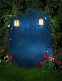 Fairy tale theme Vinyl Custom Photography Backdrop Prop Photo Studio Backgrounds TTW-15