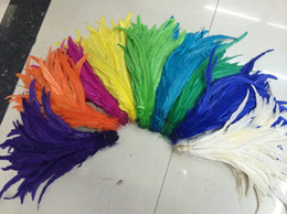 Free shipping 100pcs 14-16inch royal blue purple light pink orange yellow hot pink black lime green red turquoise Rooster coque feather