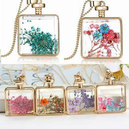 photo Glass Cabochons necklace Herbarium environment- friendly dried flower true flower locket glass square pendant necklace hot sale