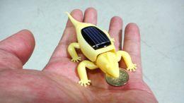 Wholesale Solar Power Intellectual DIY Solar Toy Kit Animal Chameleon Solar Kit Insect Worm solar gift for kids