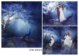 6.5*10FT(200x300CM)Wedding Backgrounds Photography Backdrops Romantic Fonds Fotografia Vinyl Backdrops For Photographic Backdrops cm-6905
