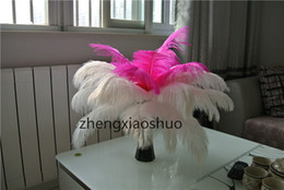 Free shipping 100pcs lot 14-16inch(35-40cm) Hot Pink and white ostrich feathers plumes Wedding centerpieces feather decor home table decor