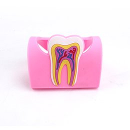 Wholesale 5pcs pack Beautiful Business Card Holder Used In Dental Clinic Rubber Tooth Shape Cardcase