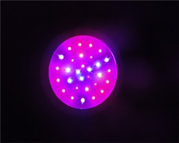 Red + Blue 30PCS chip greenhouse ufo led plant grow light for indoor growing system grow tent