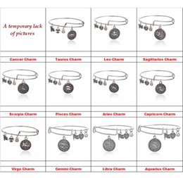 Wholesale 12 Horoscope Zodiac signs charm bracelets Ancient gold silver Alex and Ani charm bracelets bangle cuff for women statement jewelry