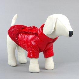 Купить Онлайн Большие костюмы для собак-Большой Горячий щенок зимы хлопка костюма собаки любимчика шнурка Bowknot Теплое пальто Pet Одежда платье