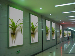 Wholesale Clear Cone shape glass hanging terrarium Glass flower vases water planter wall vase glass terrarium for home garden decoration