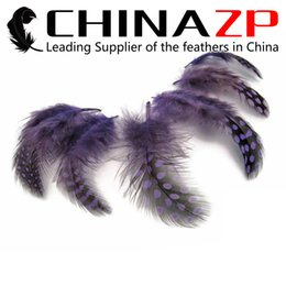 Leading Supplier China ZP Crafts Factory 500pcs lot Colorful Purple Polka Dot Guinea Hen Plumage Feathers