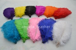 wholesale 100pcs lot 14-16inch Ostrich Feather Plume White,Lime Green,Turquoise,Purple,Red,Ivory,Black for Wedding centerpiece Decoration