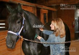 Wholesale Fashion Hot FURMINAT EQUINE DESHEDDING TOOL BRUSH RAKE HORSE