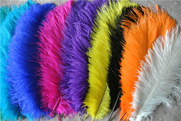 100pcs lot 14-16inch White black red light pink hot pink royal blue turquoise orange purple green Ostrich Feather Wedding centerpiece