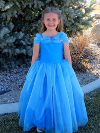 Blue Fahsion Cinderella Kids Girl's Pageant Dresses Cheap A Line Floor Length Ruffles Little Princess Flower Girl Gown For Wedding event