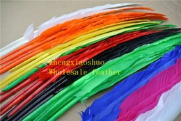 100pcs 12-14inch (30-35cm) royal blue purple orange lime green ot PINK White dark brown black yellow red Turkey wing feather